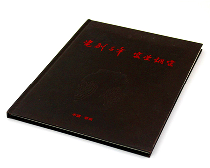 望城瓷业精装画册