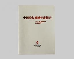 中国股权激励年度报告