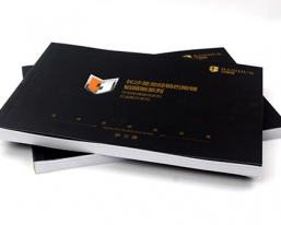 上海圣龙经销巴斯顿系列产品画册