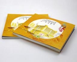 江苏文化大观图画册
