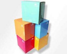 鳄鱼方形礼盒